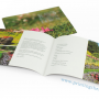 DL Size Brochure Printing Toronto