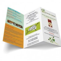 Triple Folded Flyer Printing Toronto